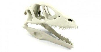 Dinosaurus, hävittäjä ja kirkon penkit – erikoisempia huutokauppakohteita